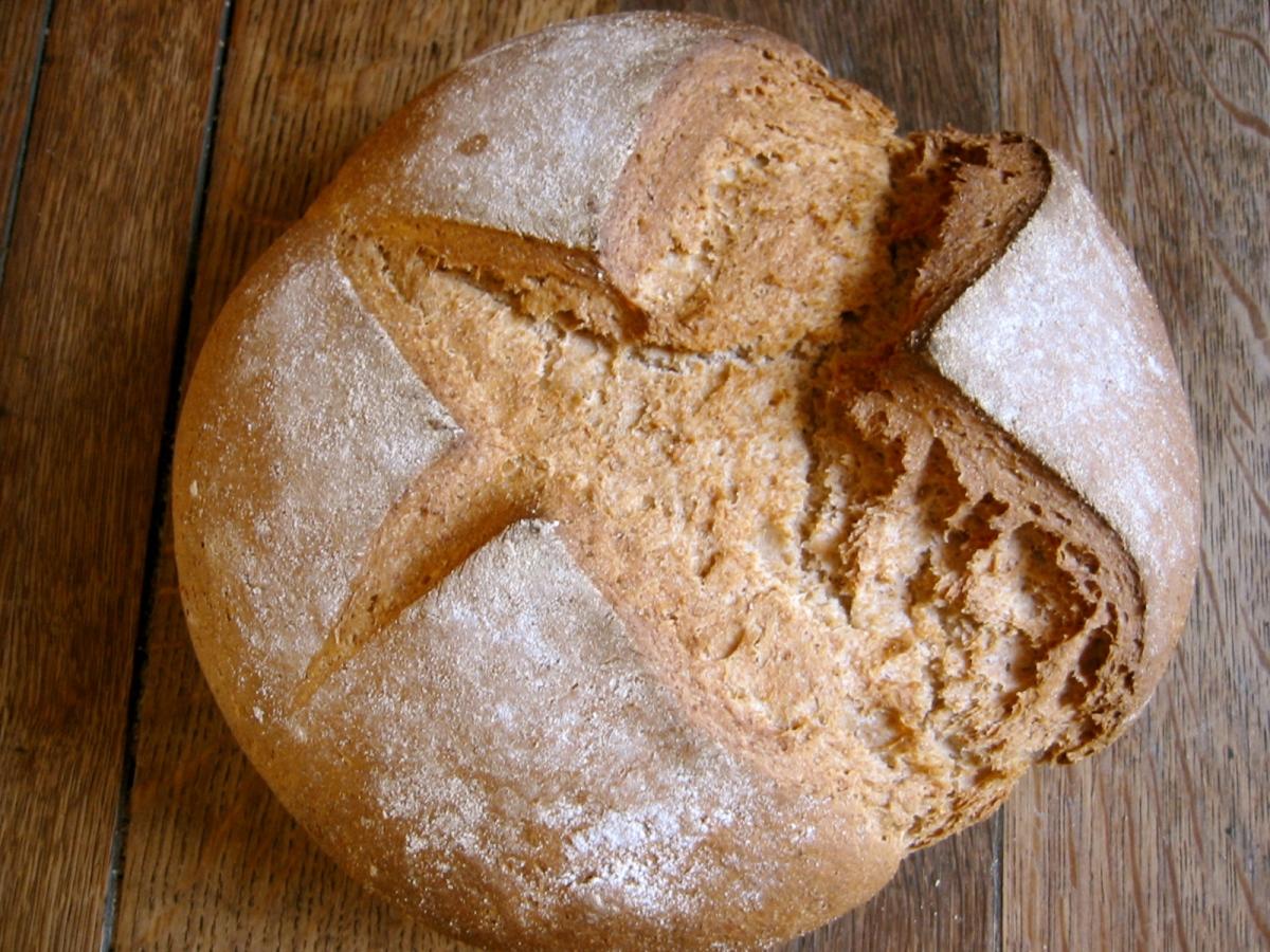 Dumm wie Brot?